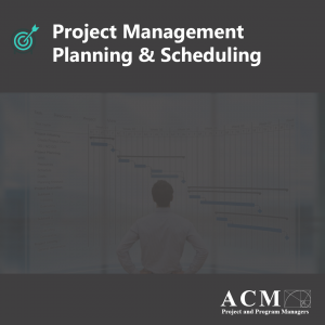 Lunch and Learn Webinar. Project Management Planning & Scheduling, Project Managers Professional Development, Ann Arbor, North Carolina, Ohio